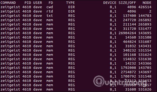 Danh sách file được mở bởi ID tiến trình