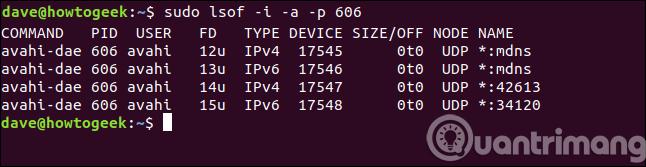 Đầu ra các file được mở bởi tiến trình có ID 606