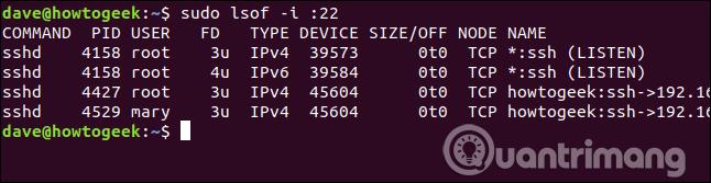Tất cả các file được mở bởi tiến trình liên quan đến cổng 22