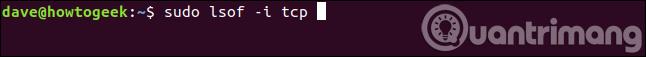 Lệnh tìm các file được mở bởi tiến trình liên quan đến kết nối Internet trên giao thức TCP